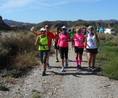 Run 221 - Arboleas
